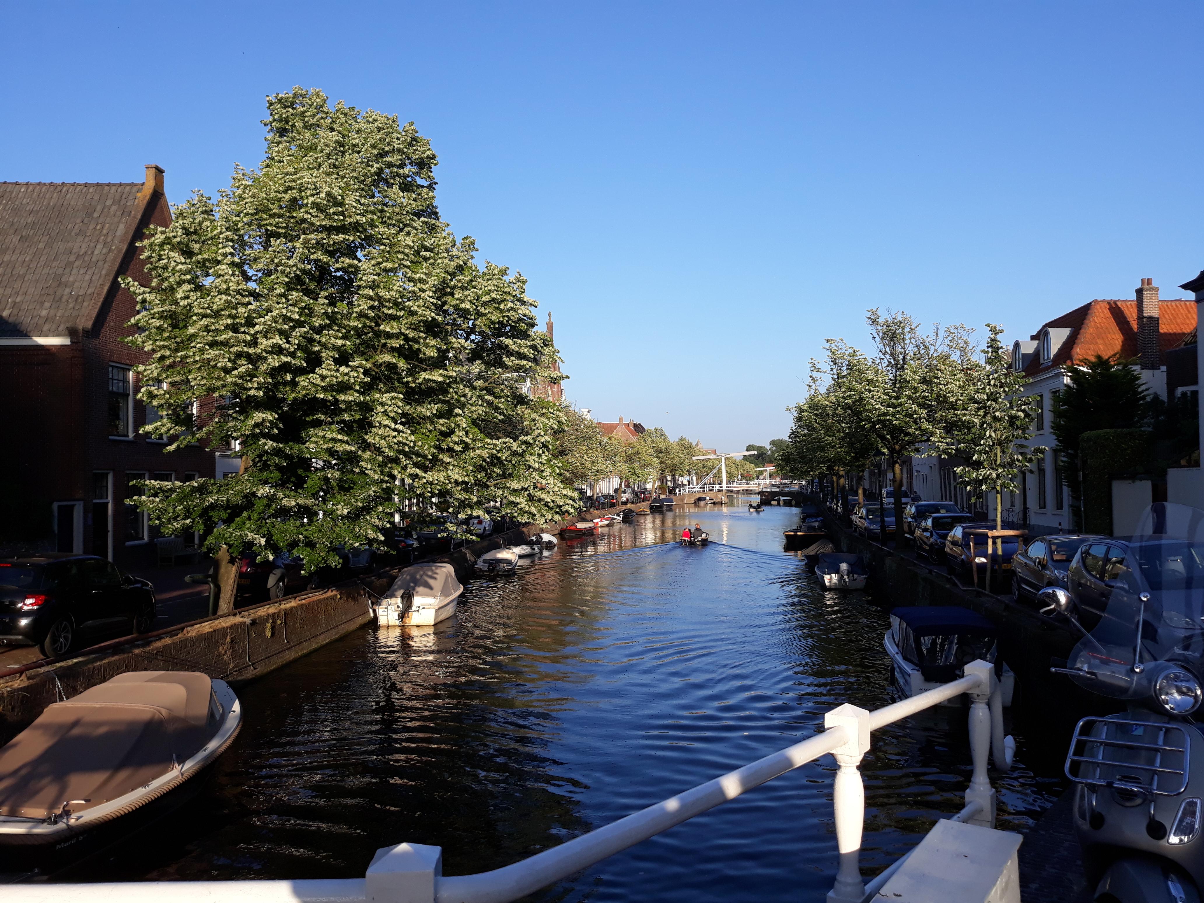 Geef uw omzet in Alkmaar een boost met linkbuilding. Bel vandaag nog 06-12345678